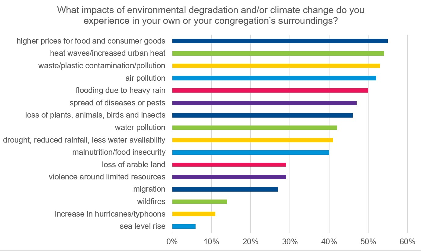 chart on impacts of environmental degradation