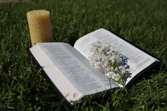 Bible, candle and flower