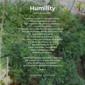 season of creation - humility